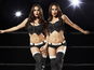 WWE Universe has 'no plans to push Divas division'