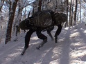 The four-legged robot is developed by Google-owned company Boston Dynamics.