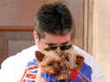 The X Factor judge is taking precautions when it comes to his beloved Yorkies.