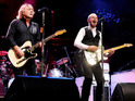 Status Quo cancels concerts up to August 10 due to guitarist's illness.