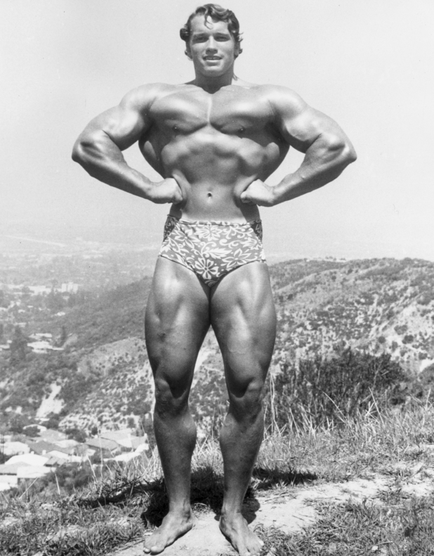 circa 1966: Full-length image of Austrian-born bodybuilder Arnold Schwarzenegger standing and flexing on top of a hillside near Muscle Beach, Santa Monica, California. He wears a floral print bathing suit. (Photo by Hulton Archive/Getty Images)