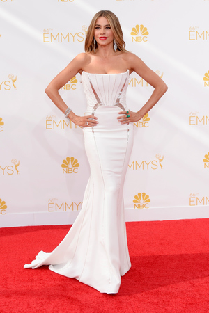 LOS ANGELES, CA - AUGUST 25: 66th ANNUAL PRIMETIME EMMY AWARDS -- Pictured: Actress Sofia Vergara arrives to the 66th Annual Primetime Emmy Awards held at the Nokia Theater on August 25, 2014. (Photo by Kevork Djansezian/NBC/NBC via Getty Images)