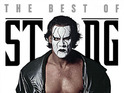 Sting is getting ever-closer to a WWE in-ring appearance.