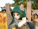 Assassin's Kittens Unity sees felines take on the roles of Ubisoft's assassins.