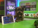 CBBC application launches on iOS, Android and Amazon Fire hardware.