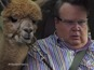 See Modern Family's Cameron meet a camel