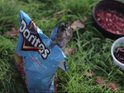 Ten consumers have had their adverts shortlisted for the Super Bowl Doritos slots.