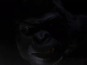 See Gorilla Grodd in The Flash teaser