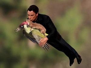 John Travolta, Weaselpecker