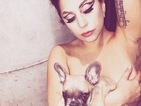 Lady Gaga introduces her new puppy to fans... topless, obviously