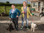 Canine comedy is dropped by the broadcaster to make way for new shows.