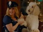 See Amy Schumer as a dog stripper
