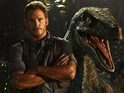 Chris Pratt and Blue in Jurassic World