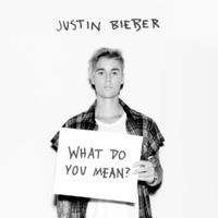 Justin Bieber 'What Do You Mean?' single artwork.